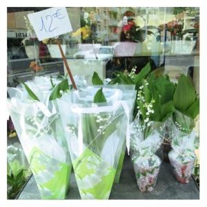 LOTV Flowers Megan In Sainte Maxime