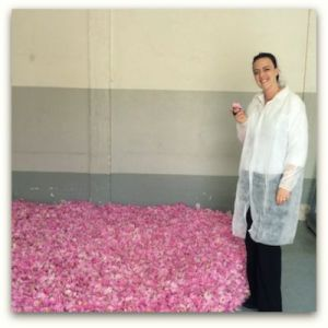 Stephanie Edit May 2014 - Smelling May Rose petals before they will be extracted to obtain absolute in the Art & Parfum production c