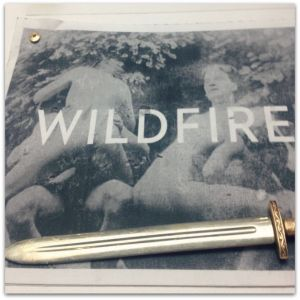 Pitti - Wildfire