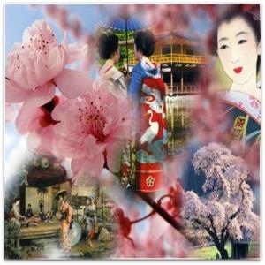 La Fleur By Livvy Forbidden Love