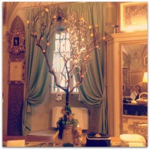 Santa Maria Novella Tree - Megan In Sainte Maxime