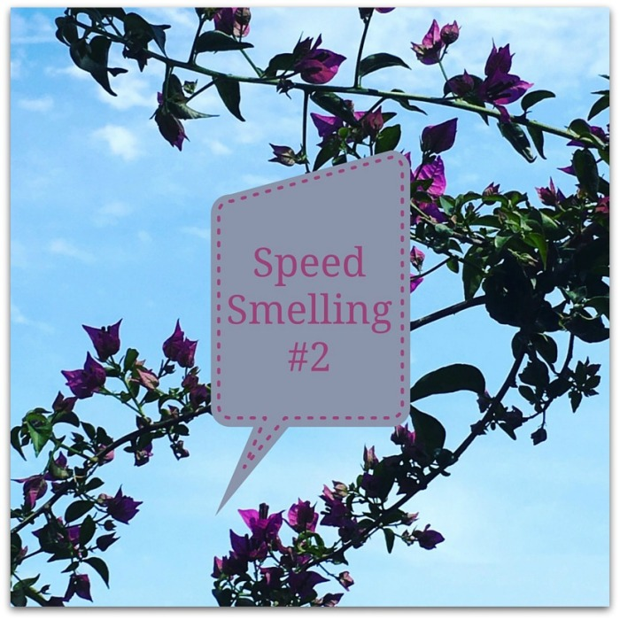 SpeedSmelling#2 Megan In Sainte Maxime