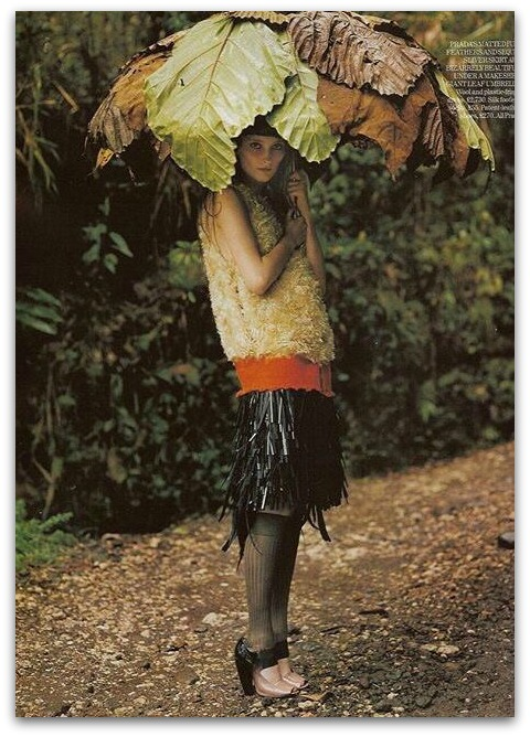 Tim Walker Rain blog