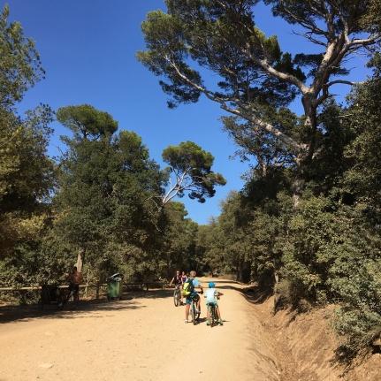 Porquerolles Bikes Megan In Sainte Maxime